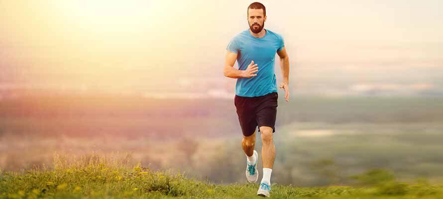 Best Testosterone Booster Supplements For Men